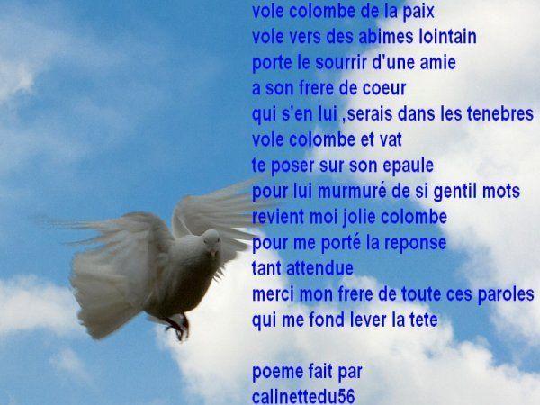 Pour Toi Mon Frere